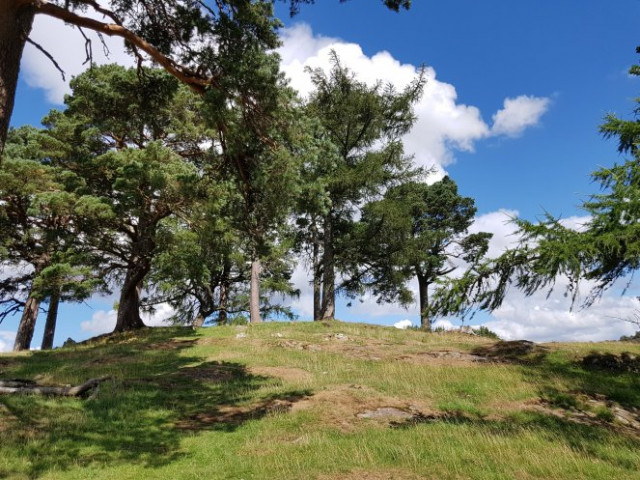 Even without the standing stones, the hilltop with its surrounding circle of trees is very recognisable.