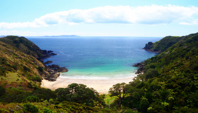 One of the many beaches in Northland.