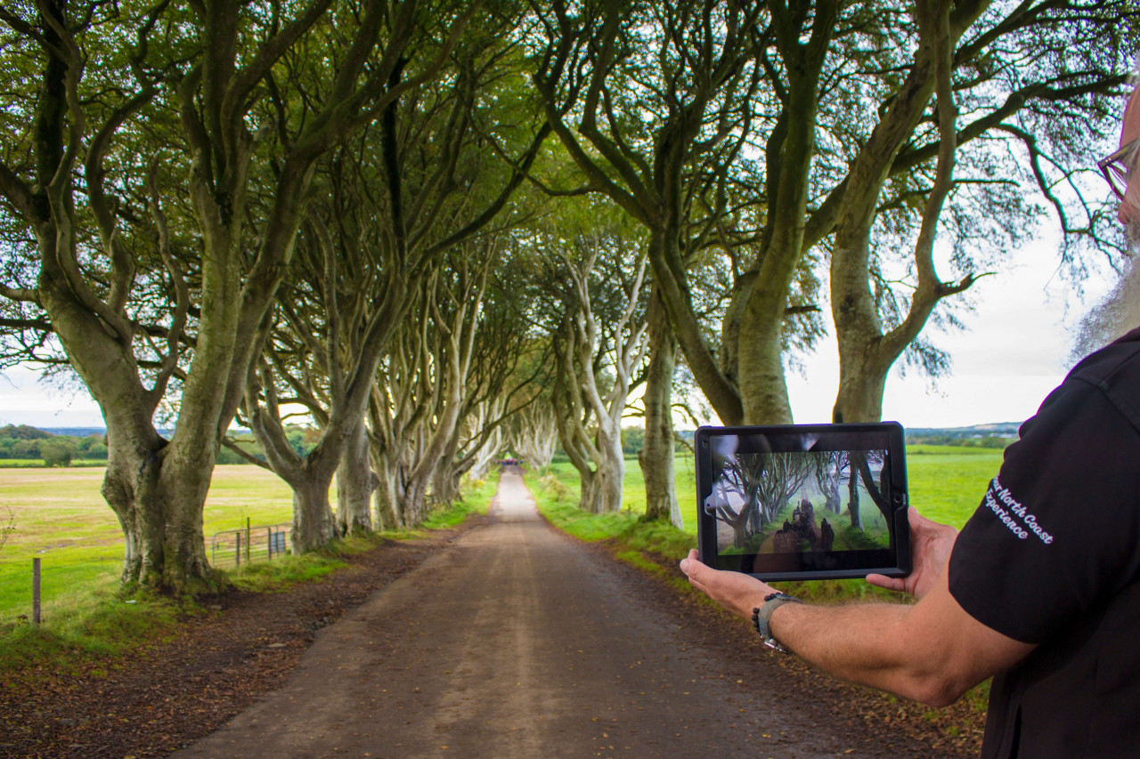 Flip comparing fantasy with reality at the Dark Hedges.