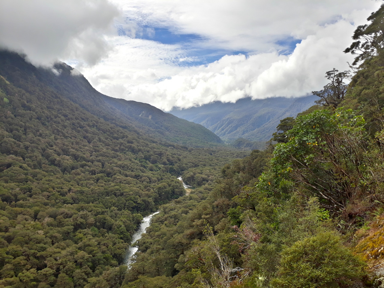 The stunning roadside lookout called Pop's view provides a view up the lush Hollyford Valley.