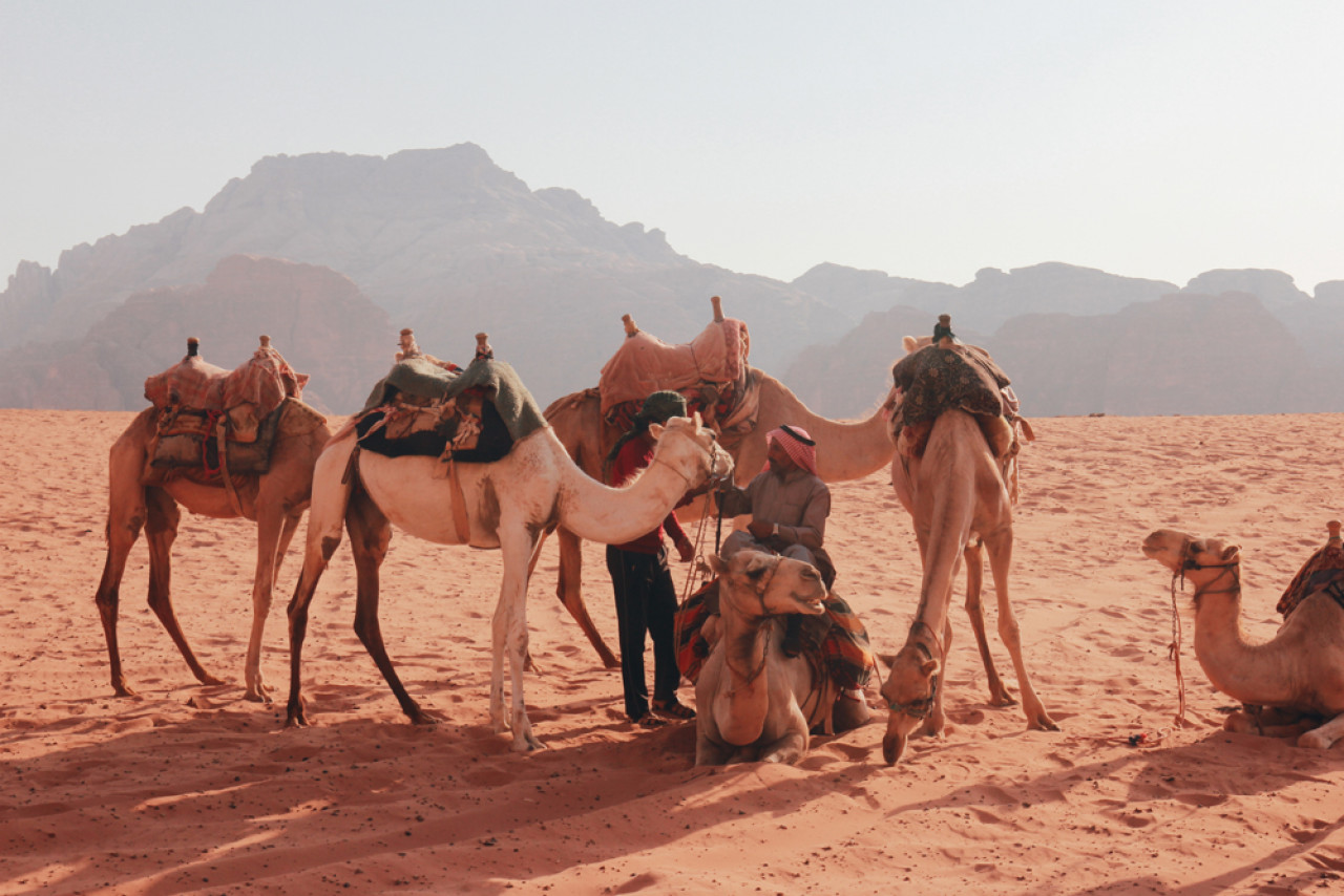One way to explore the desert is to go on a camel tour and slowly take the views in.