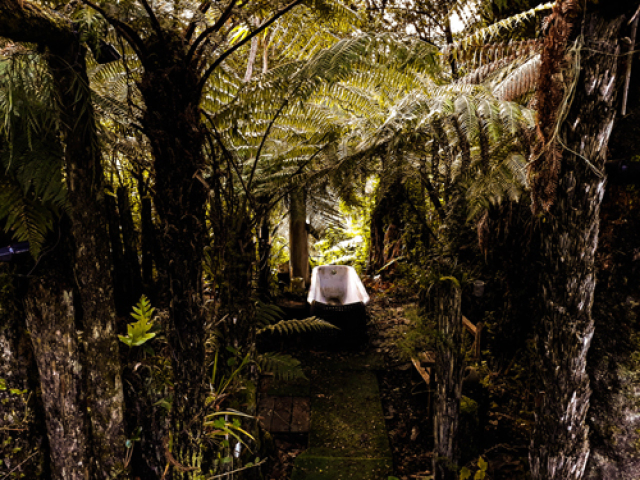 The Flying Fox Lodge might not offer five-star luxury accommodation, but where else can you have a bath amongst the tree ferns?