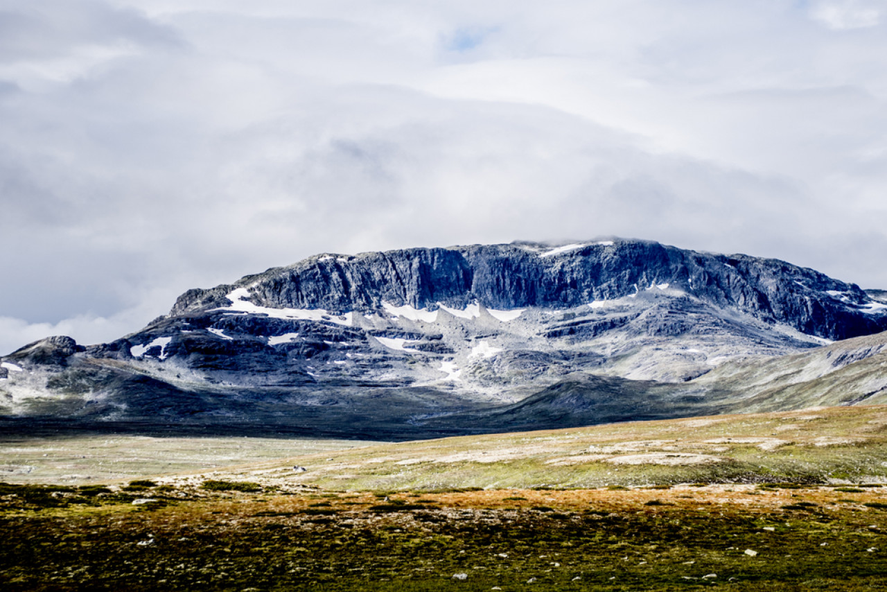The treeless landscape of Norway's arctic circle.