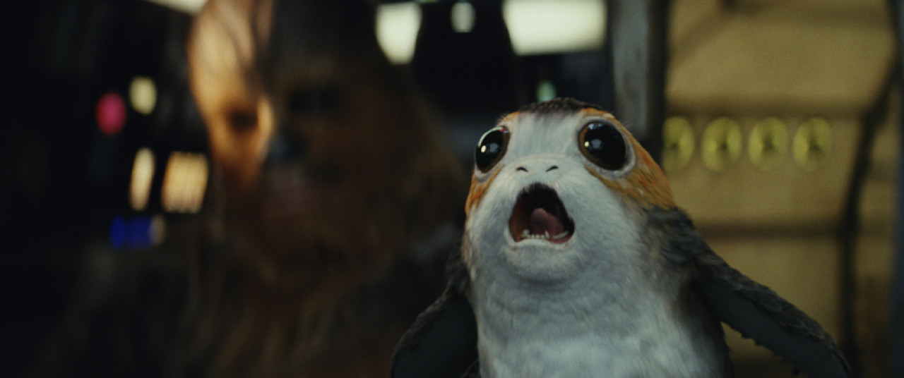 Fun fact: The Porgs were created in order to digitally cover up the real-life Puffins birds on Skellig Michael.