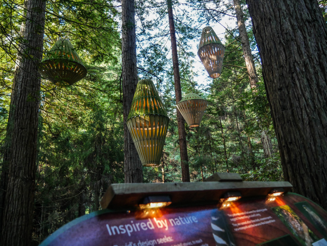 For the nighttime experience, 30 special lanterns were created by David Trubridge, a well-known sustainability designer.