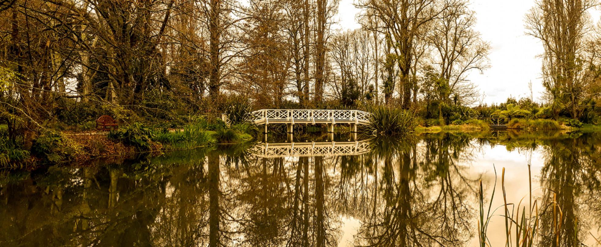 Fernside Gardens: Lothlorien / Gladden Fields