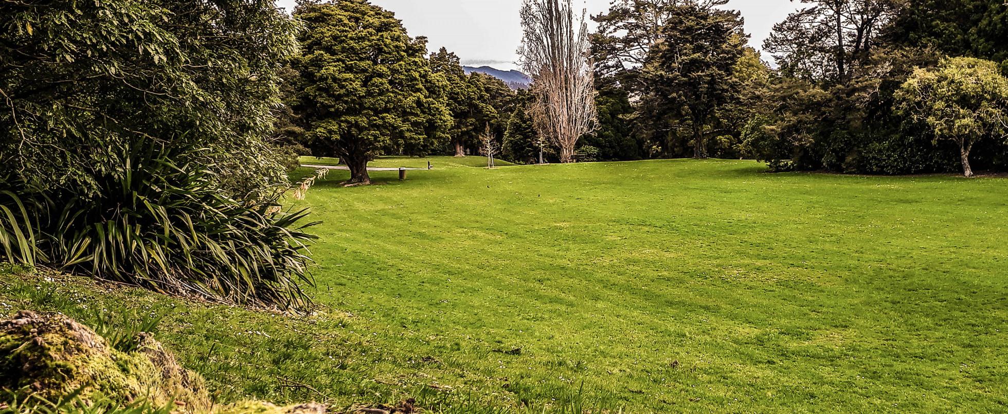 Harcourt Park: The Gardens of Isengard