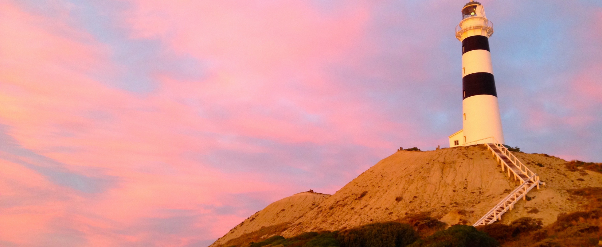 The Road to Janus