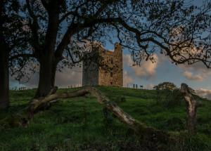 Audley's Castle: The Twins